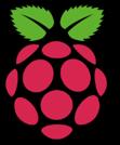 99_logo_raspberry.png